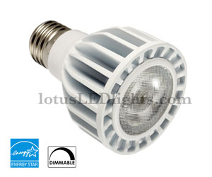 Flood LED Light PAR20